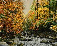 خرید اینترنتی تابلو فرش منظره پاییزی رودخانه و جنگل زیبا - کد 698