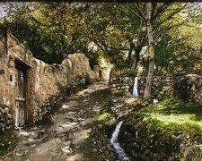 فروش اینترنتی تابلو فرش طرح کوچه باغ زیبای سردرود - کد 728