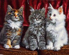 تابلو فرش دستبافت طرح سه گربه زیبا و با نمک - کد 825