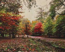 تابلو فرش دستبافت منظره زیبای جنگل پاییزی کد 915